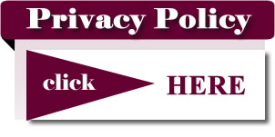 privacy_policy_img